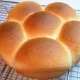 はなまるパン